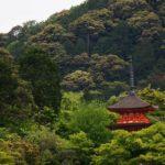 京都の山の中にある屋根だけ見えている神社