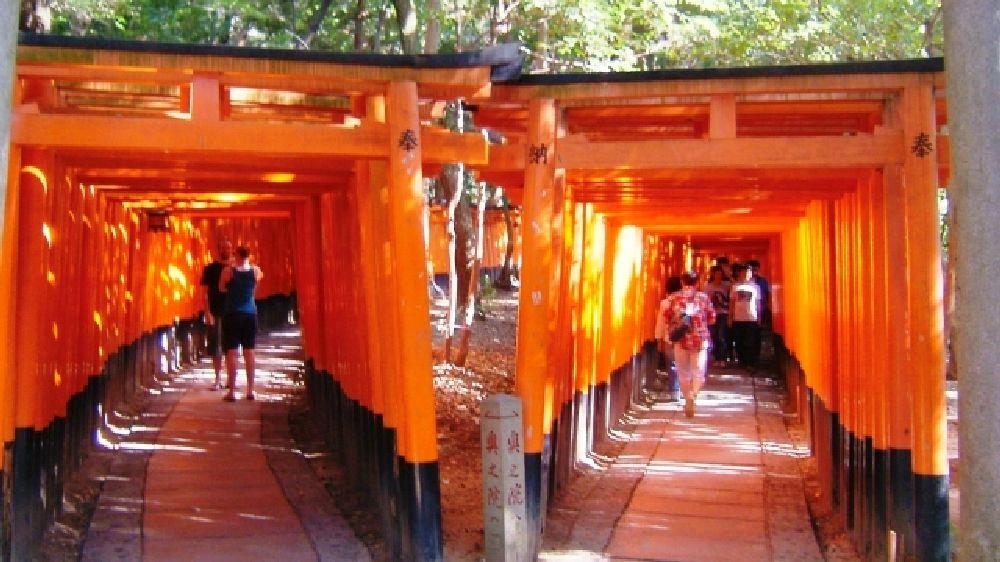 京都市にある伏見稲荷大社の鳥居