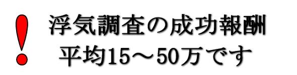 浮気調査の成功報酬制料金は平均15~50万円です。